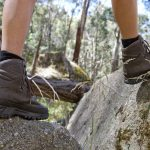 Mt_Cole_Bushwalking_6201